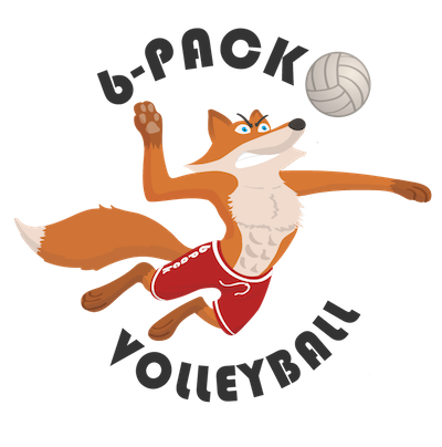 6 Pack Volleyball Online Payment