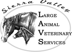 Large Animal Veterinary Services Payments